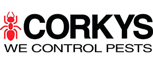 corkys-pest-control