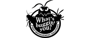 whats-bugging-you